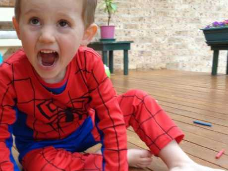 This photo of William Tyrrell was taken shortly before his disappearance. Picture: NSW Police Force