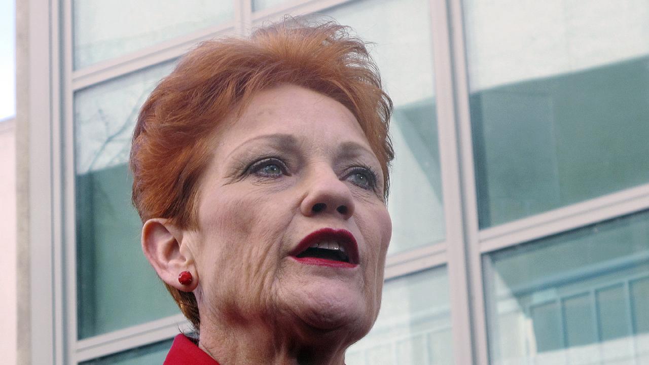 One Nation founder Pauline Hanson