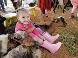 Crowds of families at Toowoomba Show as gates open