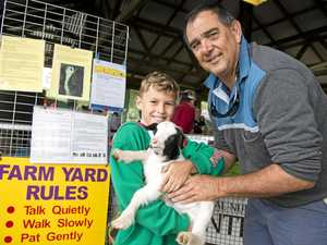 Three decades for Toowoomba Show animal nursery steward