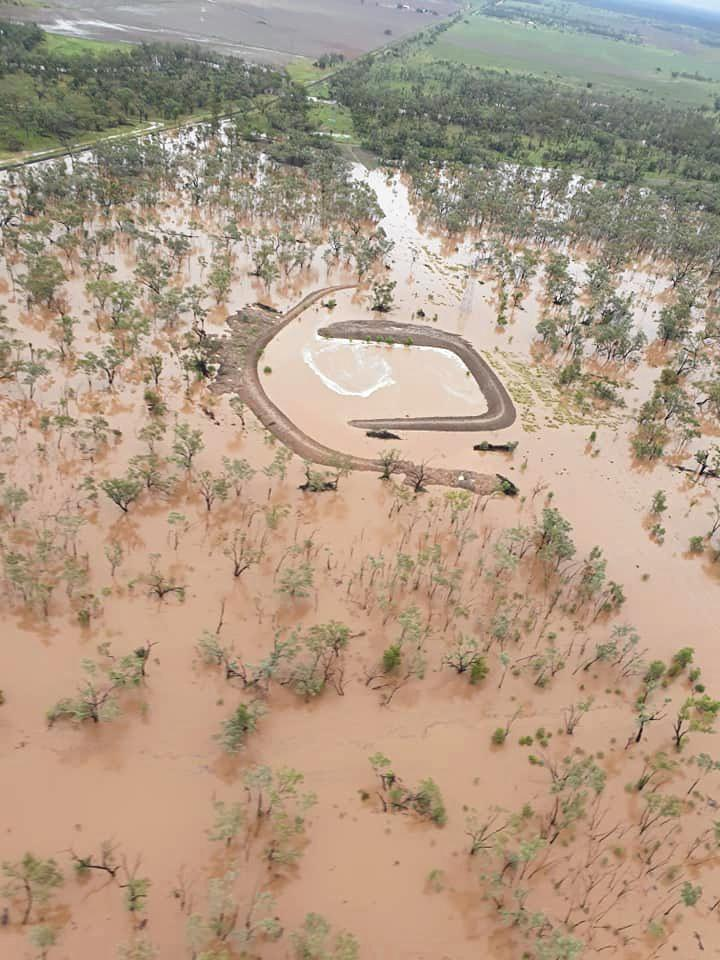 Judy Smith, from Wena Park near Clermont, was able to get the land of the land from above on Thursday morning after over 10mm fell on Wednesday night.