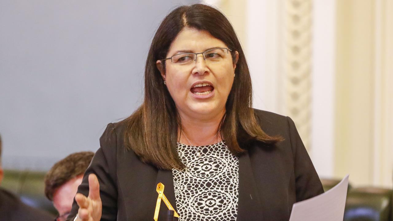 Education Minister Grace Grace says people are constantly raising concerns about NAPLAN. File picture.