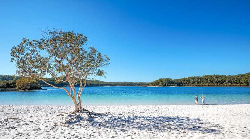 The bodies of two Japanese nationals aged 16 were found at Lake McKenzie this morning.