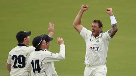 Pattinson celebrates the wicket of NSW veteran Peter Nevill. Picture: Getty