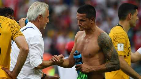 Bert van Marwijk widely criticised for his use of Tim Cahill. Picture: AAP