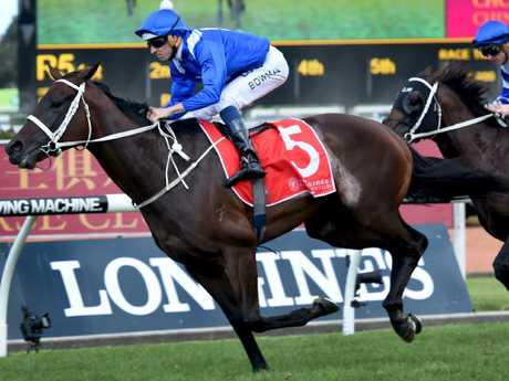 Winx will make a surprise appearance at Randwick on Saturday.