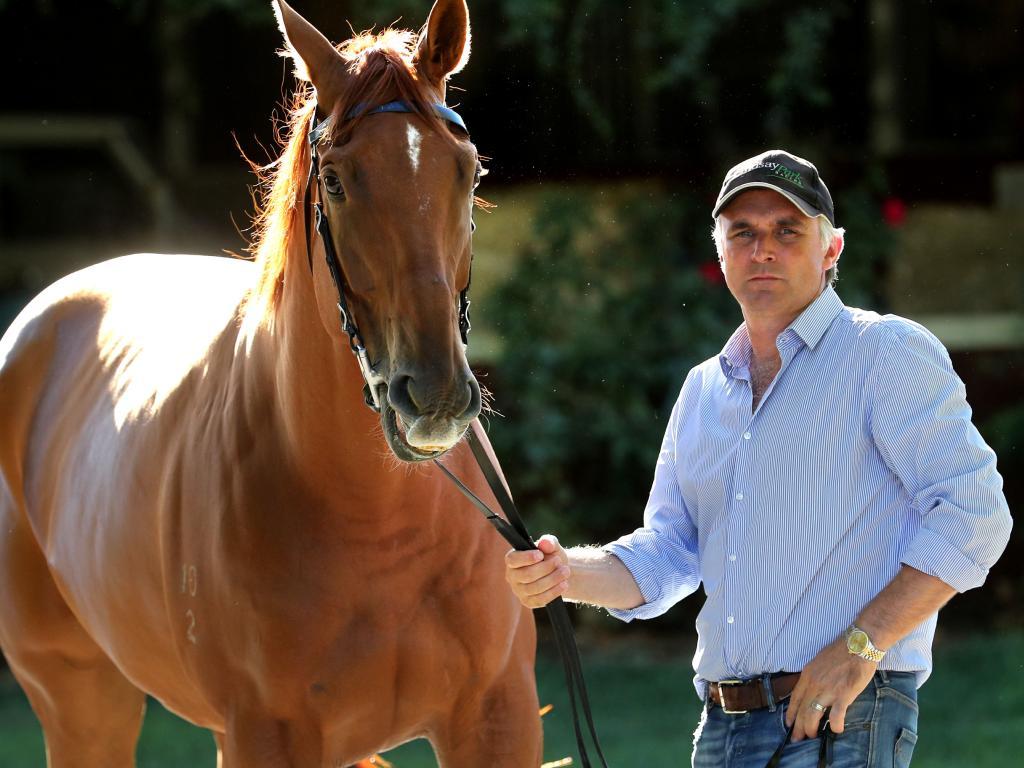 Tom Dabernig with Vega Magic at the Lindsay Park stables.