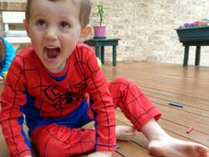Web surrounding William Tyrrell exposed