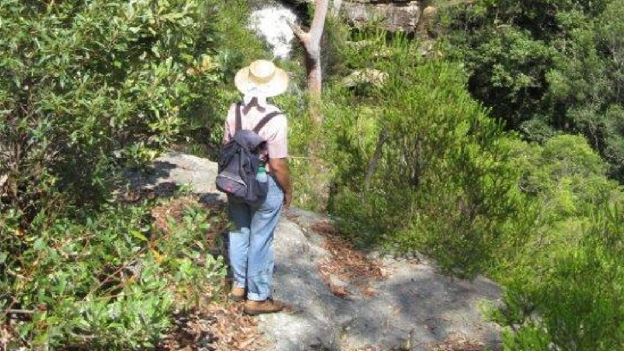 Gaida Coote's remains were found at Ku-ring-gai Wildflower Garden at St Ives, north of Sydney.