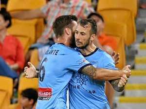 Brillante comes back off Sydney bench