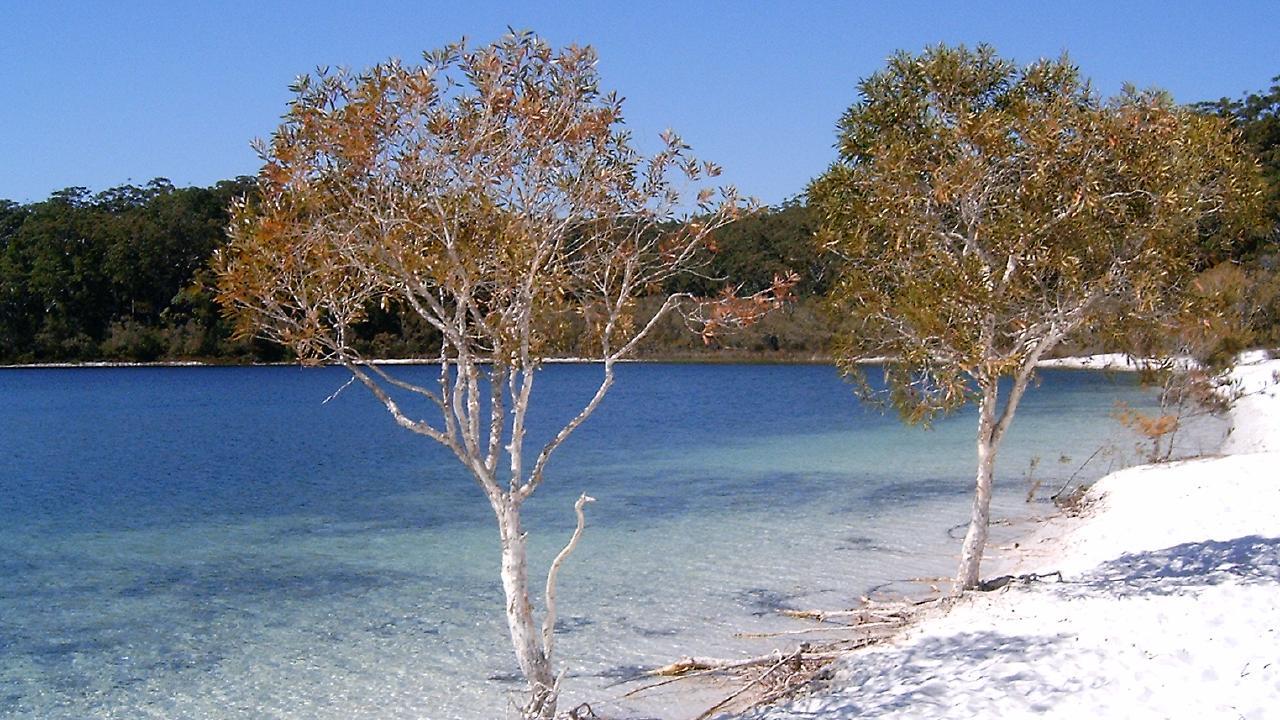 Lake Mackenzie, Fraser Island.