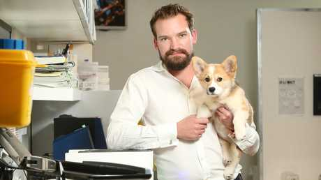 Sydney vet Dr Sam Kovac, pictured with Maddie, is worried pet owners are making decisions based off what they see on Youtube and Google. Picture: Richard Dobson