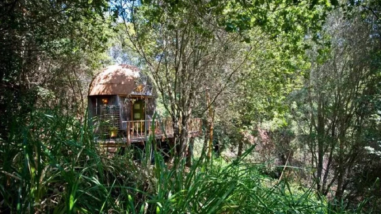 This little cabin in California is the most popular Airbnb listing in the world. Picture: Airbnb