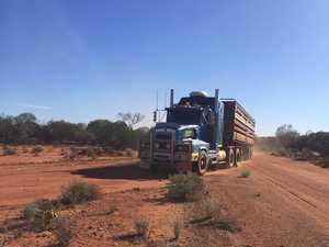 Truckies help struggling WA farmers