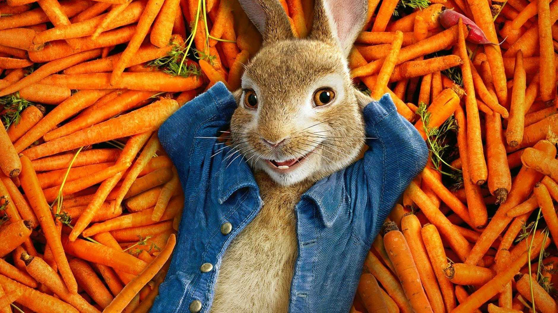 Starry Nights Outdoor Movies will be screening 'Peter Rabbit' on the Cooroy Library Rooftop on Friday November 2.