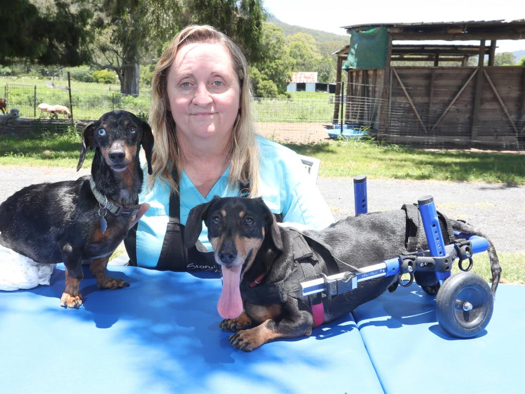 File photo of Lisa-Jayne Cameron of Storybook Farm pictured with Krumm (L) and Cody in Canungra in 2018. Picture: Richard Gosling