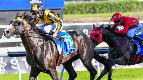 Trapeze Artist powered home to beat Redzel in last year's TJ Smith Stakes. The pair will clash again in Saturday's big sprint. Picture: AAP