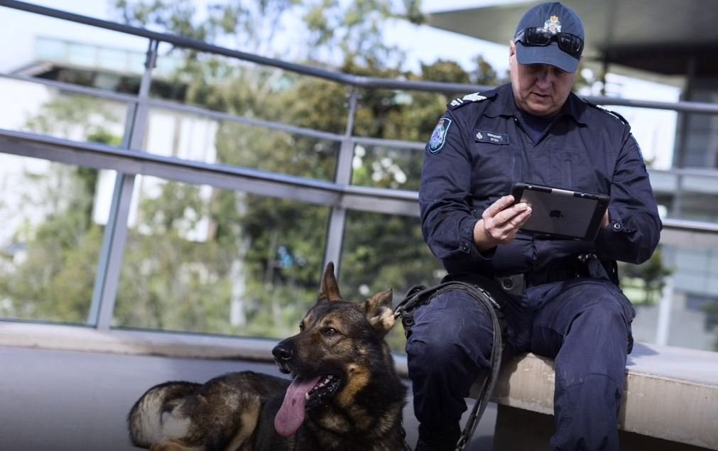 A dog squad handler using an iPad mini.
