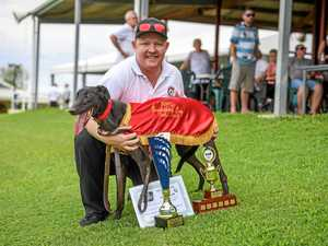 Ipswich winner continuing fine breeding tradition