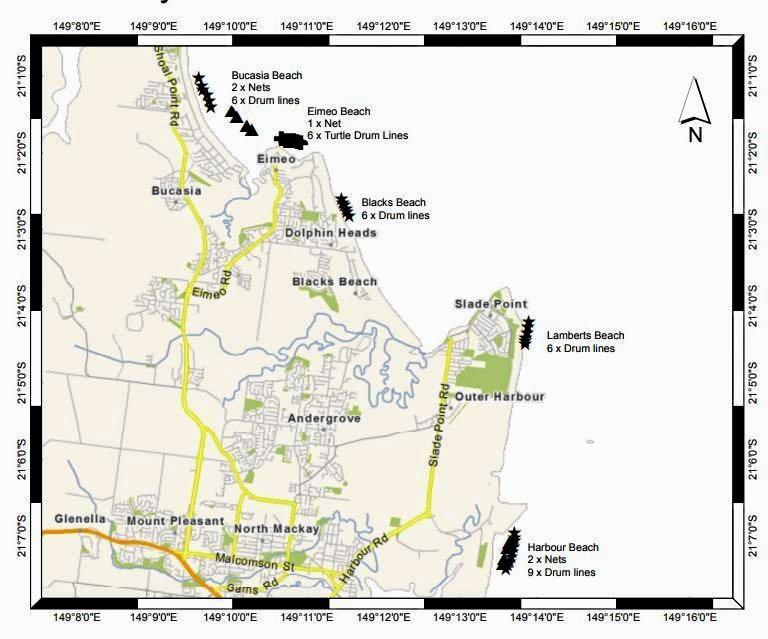 Drumlines off the coast of Mackay.