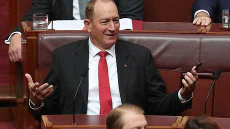 Anning gesturing in the chamber. Picture: Kym Smith