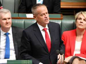 Labor's promise for free cancer treatment
