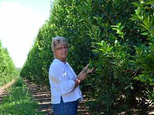 Mundubbera growers lead the way in Asian export