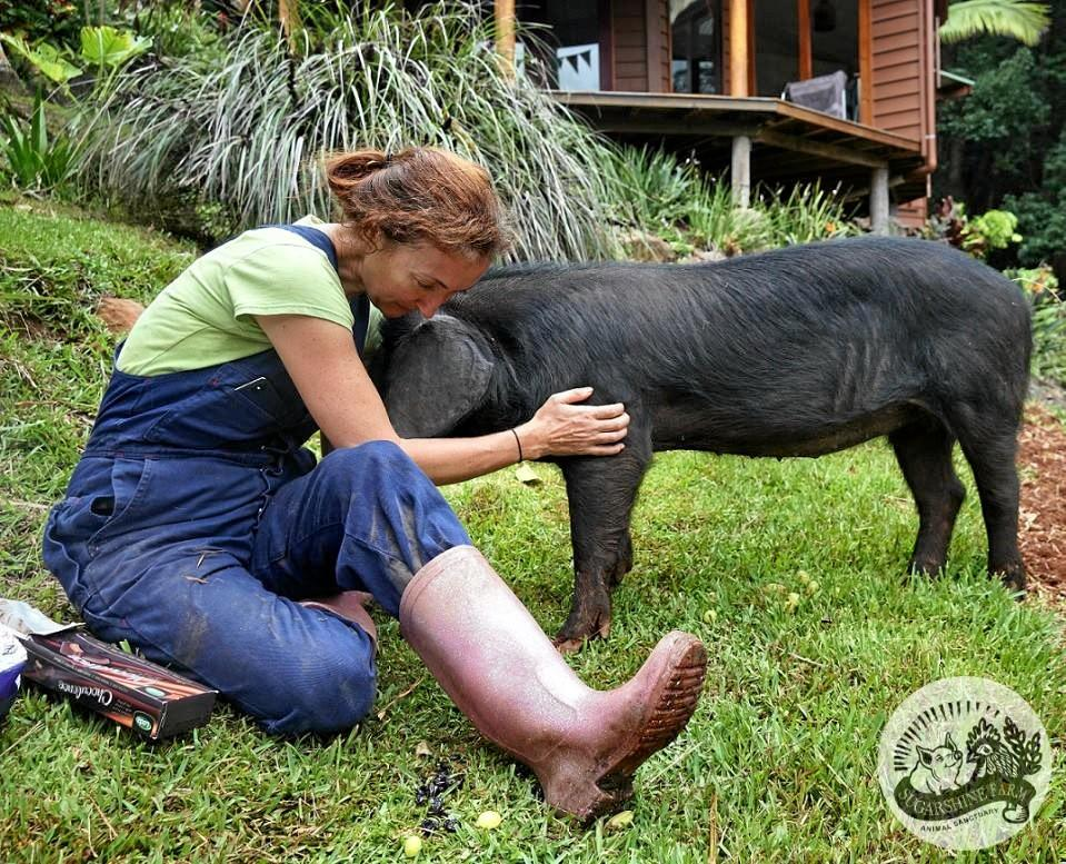Sugarshine Farm founder Kelly Nelder and pig in care, Precious.
