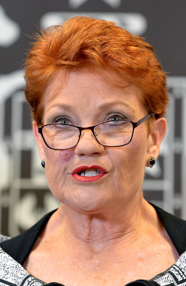 One Nation leader Pauline Hanson was ranked untrustworthy by 33 per cent of voters. Picture: Getty