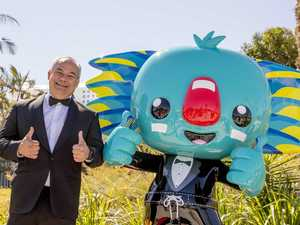 Revealed: What happened to Borobi