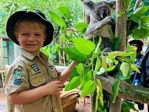CUTE VIDEO: Watch 4 year-old Owen who is a wildlife warrior