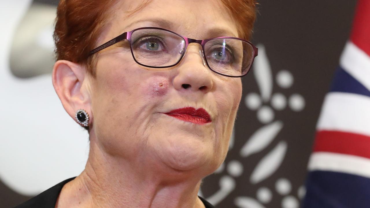 Pauline Hanson. Picture: Liam Kidston