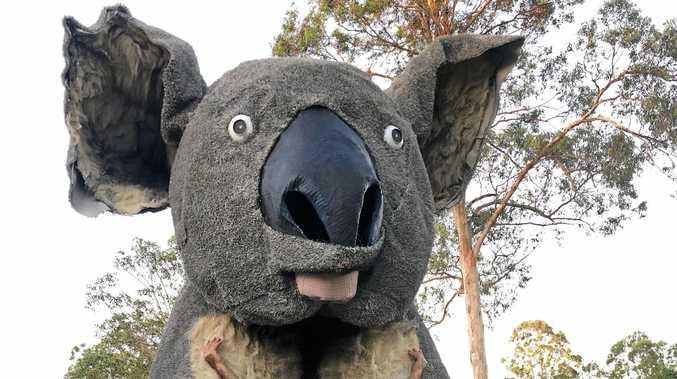 MAMMOTH MARSUPIAL: Giant Koala and Townsville Cultural Festival's Festival Director and sculptor, Dr Farvardin Daliri (OAM).