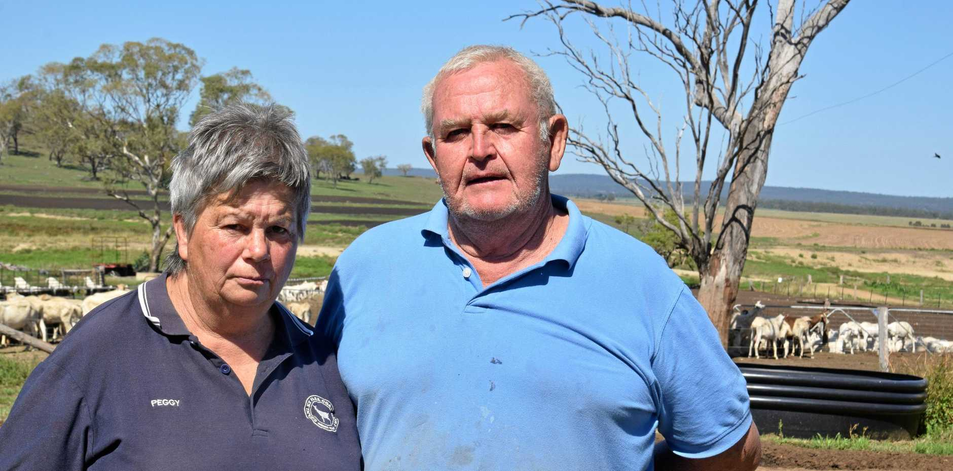 Peggy and Dan Jessen run a 2500-head dairy goat operation near Clifton. The couple were worried when rumours circulated that vegan protesters were heading to their farm.