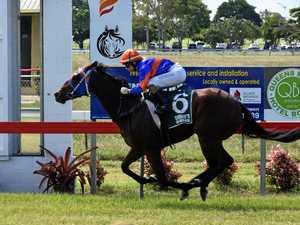 Mackay's leading trainer dominates Bowen races