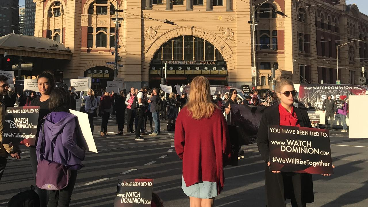 Vegans blocked traffic at Flinders Street Station this morning.
