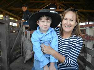 School holidays bring a joyful vibe to the Pig and Calf Sale