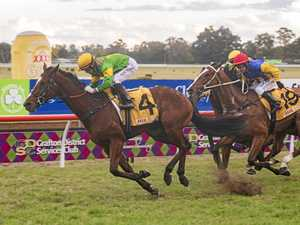 'Exclusive' Kensei Club full for 2019 Grafton Cup