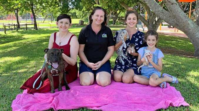 ANIMAL LOVERS: Volunteer carer Vicky Bobeldyk with Staffy cross Shelley, President of MARS Peta Kelly, Cat carer Steph McCann and Bella McCann.