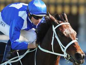 Cash spike that created the Winx legend