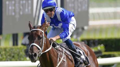 Winx will be retired after running in the Queen Elizabeth Stakes. Picture: AAP