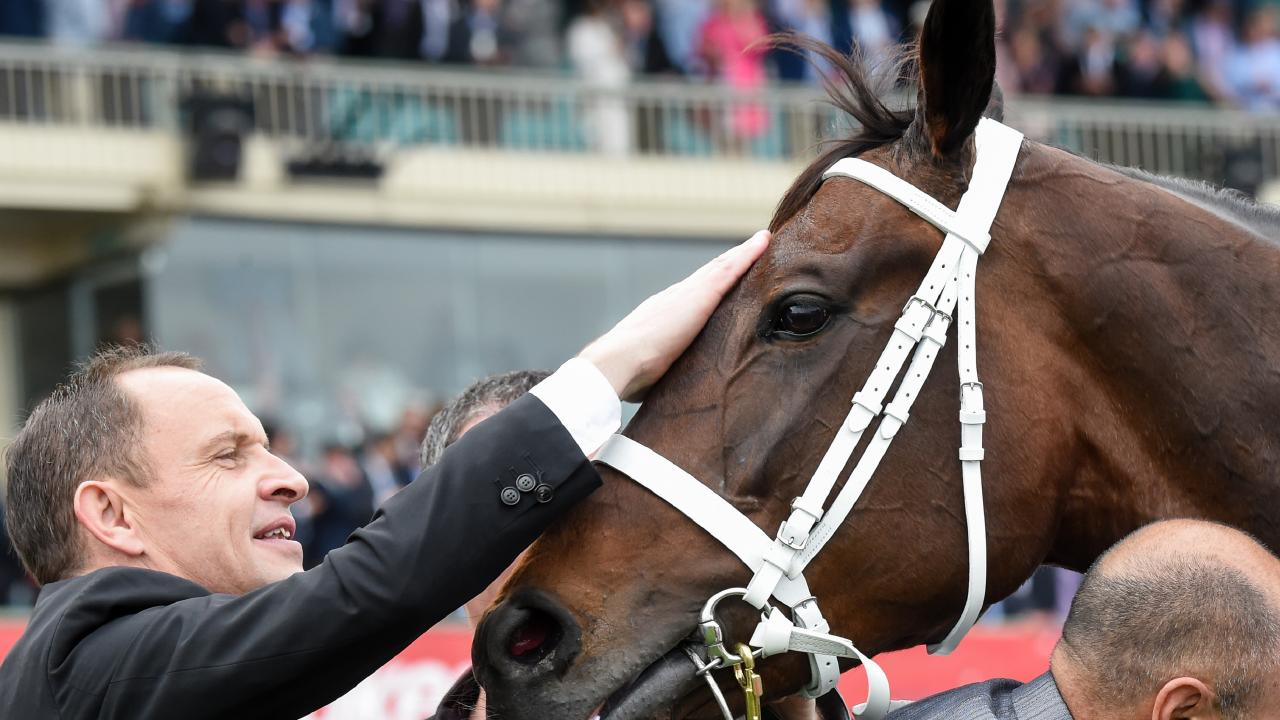 Chris Waller and Winx have combined for one last win. Pictures: Brett Holburt/Racing Photos