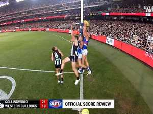 'Head scratcher' robbed Dogs of goal: Bevo