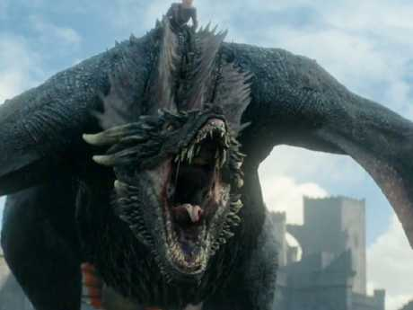 The dragons were inspired by geese and cats. Picture: Supplied