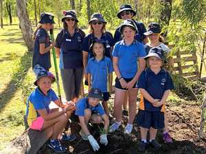 Guides celebrate 100 years with tree planting goal