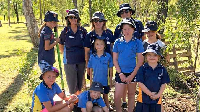 DIGGING IN: Girl Guides who planted trees on Tuesday included (back) Amelia Braybrook-Shanks, Alison Kearney, Michelle McCann, Donna Stressing; (middle) Emmie Sharp, Katelyn Kleinhans , Sara Shanks (front) Maggie Shepherd, Lara McCann and Kahlan Merrin.