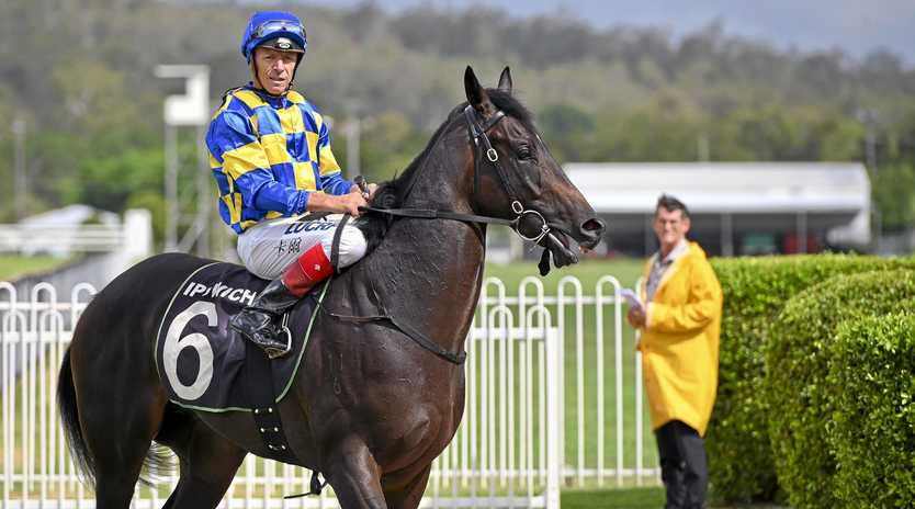 Jockey Michael Cahill returns to the Ipswich enclosure after riding Kalik to victory at the Ipswich track.