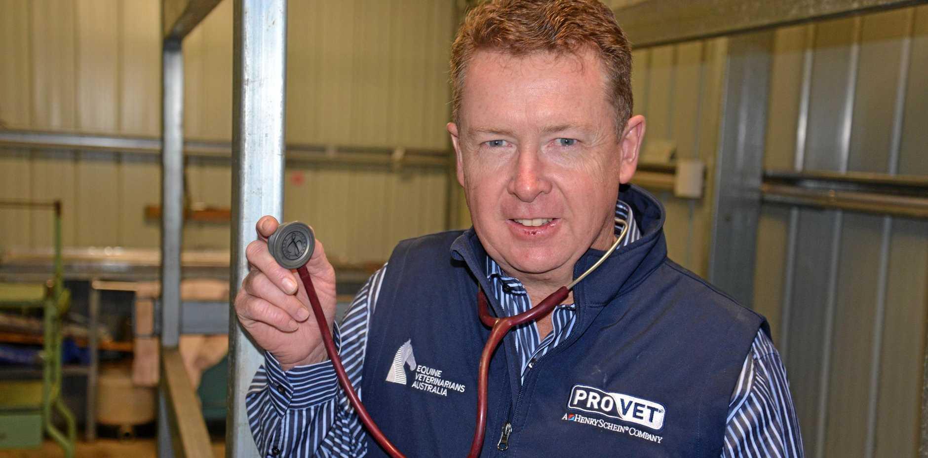 STUDYING HORSES: Chris Reardon, of Warwick Vet Clinic, is veterinarian for the Polocrosse Association of Australia.