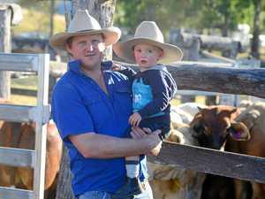 'Vegandals': Farmer explains harsh truths of food production