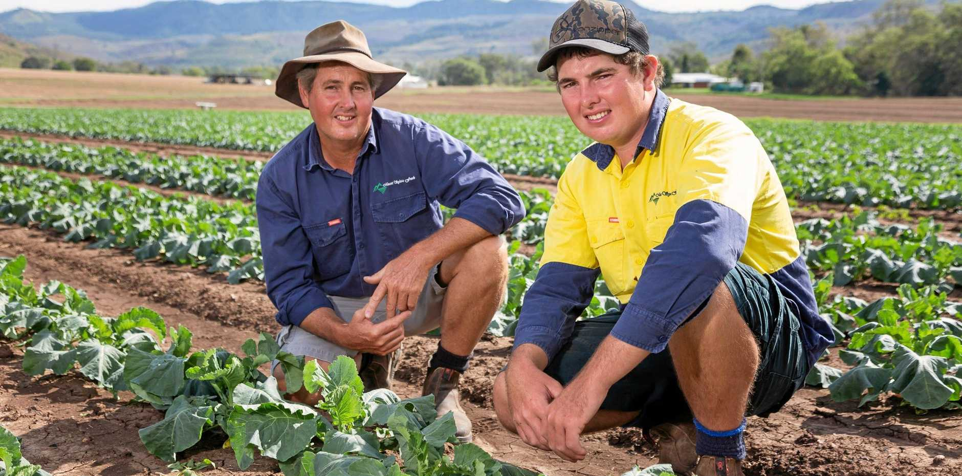 Brian Crust and his son Matthew amongst a crop at their Mount Sylvia Farm.
